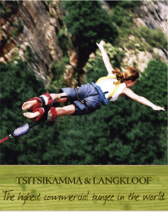 Tsitsikamma & Langkloof - The Highest Commercial Bungee in the World